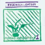 Fred Lonberg Holm - Lightbox Ensemble (flying aspidistra)